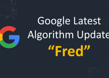 How to survive from Google Fred Algorithm