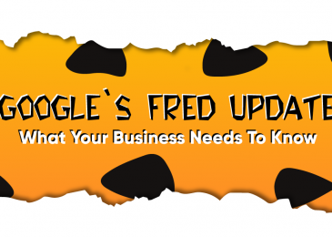 Google Fred Update -Everything you need to know