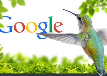 The impact of Google Hummingbird Algorithm on SEO
