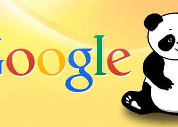 Tips to recover from a Google Panda Penalty