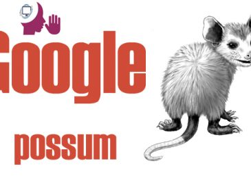 Tips to recover website from Google Possum Update