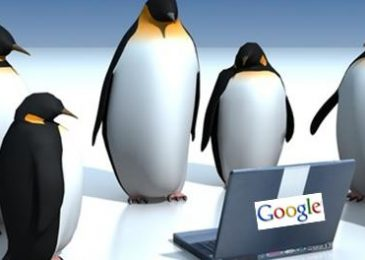 Everything to learn about Google Penguin Algorithm Update