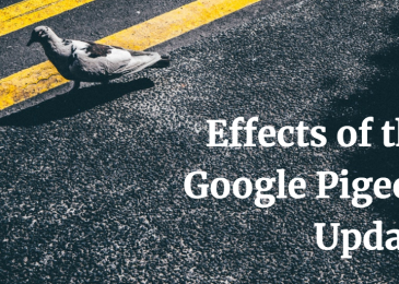 How does Pigeon Algorithm Upadate impact on SEO?