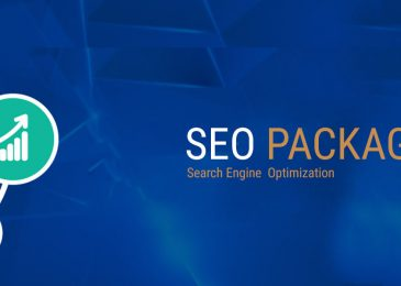 The best cheap seo service provider to choose